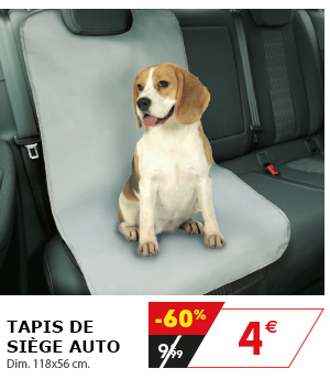 Tapis de siège auto